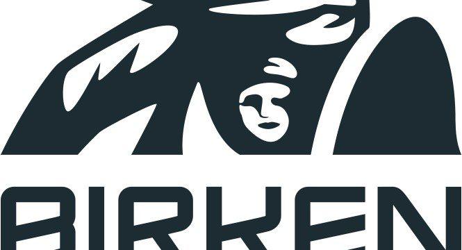 Seedningslopp till Birkebeinerrennet 2020